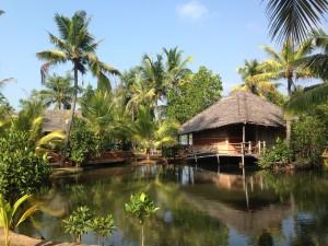 Kerala-lagoon